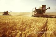 Объявление Привлекаем инвестиции, оптовая торговля зерном, экспорт. Урожай 2018. в Краснодарском крае