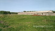 Объявление Продам ферму в Алтайском крае