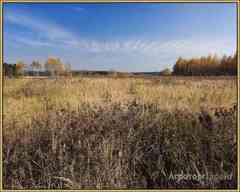Объявление Участок 2000 соток в Смоленской области
