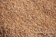Объявление Крупа пшеничная из твердых сортов пшеницы в Алтайском крае