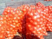Продаю Полимеш. Турецкая овощная сетка луковая 50х80 (30 грамма) в Краснодарском крае