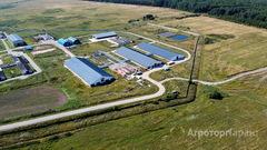 Объявление Продается молочно-товарная ферма на 1200 голов крс в Новгородской области