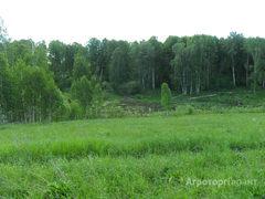 Объявление Продам 6 га под строительство в Алтайском крае