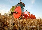 Объявление Продам участок земли сельхозназначения 262 га в Алтайском крае