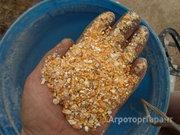 Объявление Кукуруза дробленая в Москве и Московской области