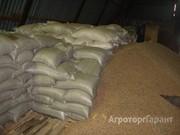 Объявление Реализуем оптовую закупку пшеницы 5 класса в Краснодарском крае