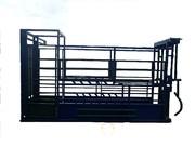 Объявление Раскол для фиксации КРС, взвешивания, ветеринарной обработки  быков, коров, телят в Ставропольском крае
