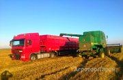 Объявление Услуги уборки урожая в Липецкой области