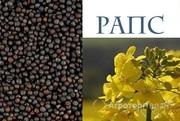 Объявление Рапс масличный - поставки в Китай в Тамбовской области