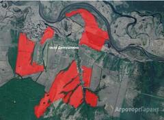 Объявление Земельный массив общей площадью 920 Га в Сасовском районе Рязанской области в Рязанской области