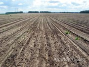 Объявление Продаю земельный участок сельхозназначения Наровчат в Пензенской области