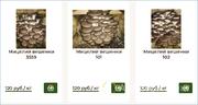 Объявление Мицелий грибов оптом в Москве и Московской области