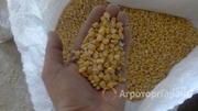 Объявление Кукуруза фуражная в Москве и Московской области