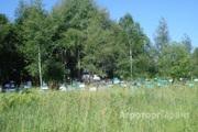 Объявление Продам мед с личной пасеки в Алтайском крае
