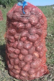 Объявление Картофель в Алтайском крае