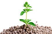 Объявление Средства Защиты Растений (Пестициды, гербициды, инсектициды) в Краснодарском крае