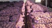Объявление Картофель оптом в Республике Крым