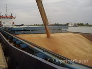Объявление Зерновозы, требуются в Ростовской области