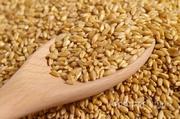 Объявление Пшеница 4 класс в Республике Адыгее