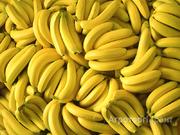 Объявление Бананы оптом продаем в Санкт-Петербурге и области