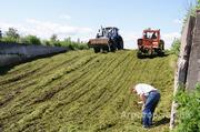 Объявление Силос кукурузный в Москве и Московской области