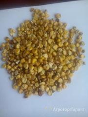 Объявление Кукуруза фуражная в Кемеровской области