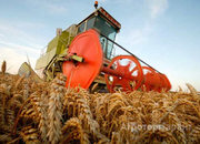 Объявление Сельхозтехника в Аренду!!! в Алтайском крае