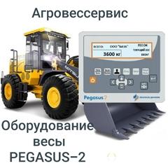 Объявление Бортовая система динамического взвешивания Pegasus 2 для фронтальных/вилочных погрузчиков любых типов. в Самарской области