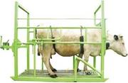 Объявление Фиксационный станок для животных в Иркутской области