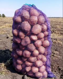 Объявление Картофель мытый оптом от производителя, Калибр 5+ в Пензенской области