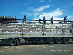 Объявление Грузоперевозки. Междугородние перевозки. Тент 20 тонн в Алтайском крае