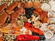 Объявление Продаем рыбу и морепродукты в Санкт-Петербурге и области