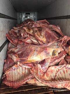 Объявление мясо говядина в Оренбургской области