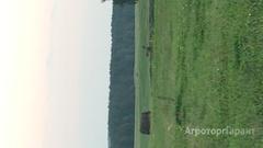 Объявление Сено луговое в рулонах в Курганской области