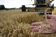 Объявление Требуется агроном в Алтайском крае