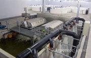 Объявление оборудование для выращивания осетра, форели, клариевого сома (УЗВ) в Санкт-Петербурге и области