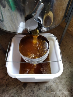 Объявление Продаю Качественный Мёд в Республике Башкортостан