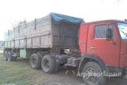 Объявление Грузоперевозки зерновоз в Алтайском крае