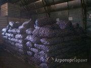 Объявление Картофель мелкий сорта Розара оптом со склада в Свердловской области