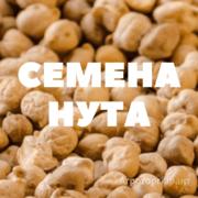 Объявление Семена нута в Краснодарском крае