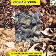Объявление ПРОДАЮ ОПТОМ грибы сушеные лесные в ассортименте в Москве и Московской области