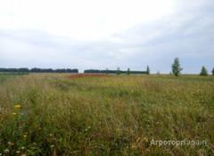 Объявление Участок 64 ГА Чернозем в Рязанской области