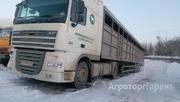 Объявление Услуги Скотовоза в Республике Татарстан