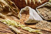 Объявление Закуп сельхозпродукции в Краснодарском крае