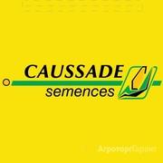 Объявление семена CAUSSADE SEMENCES Франция в Воронежской области