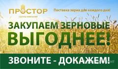 Объявление Купим пшеницу, ячмень в Тюменской области