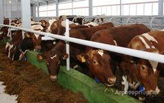 Объявление Крупное фермерское животноводческое зерноводческое хозяйства Волгоградская область в Волгоградской области
