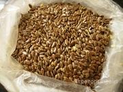 Объявление Лен масличный - на экспорт в Краснодарском крае