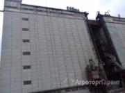 Объявление Куплю пшеницу 3 класс, 4 класс в Алтайском крае
