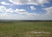 Объявление Участок земли  сельхозназначения 2100 га в Алтайском крае